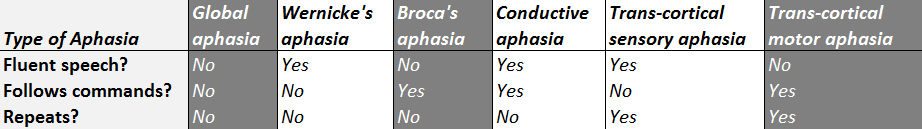 expressive aphasia classification